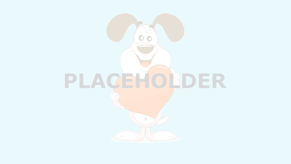 mywaggytails business placeholder