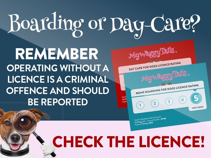 mywaggytails business boarding or day care check the licence