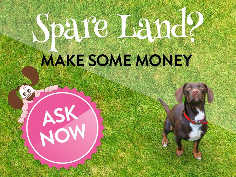 mywaggytails business spare land make some money