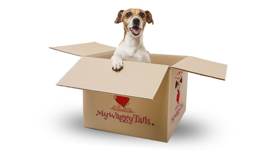 mywaggytails business dog in a box