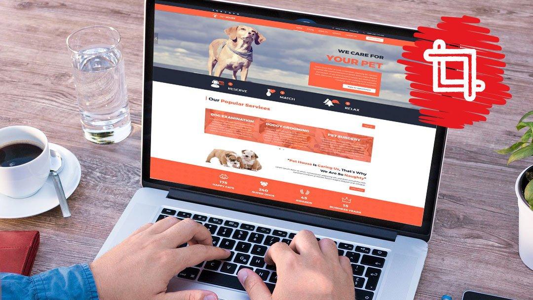 mywaggytails business web development