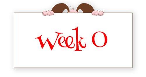 week 0