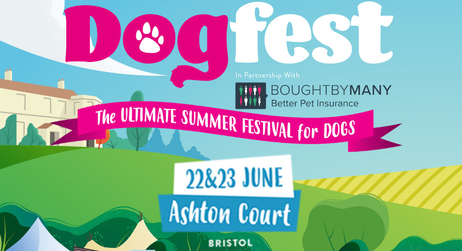 Discover! A Dog Business In A Box! Escape From The Daily Grind and Enjoy DogFest. Fun Guaranteed!