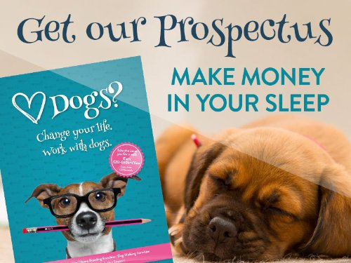 get our prospectus mywaggytails